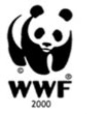 the solution to saving the giant pandas from extinction Saving the giant panda: only continued vigilance on the part of china and the international community will save it finally from extinction to learn more.